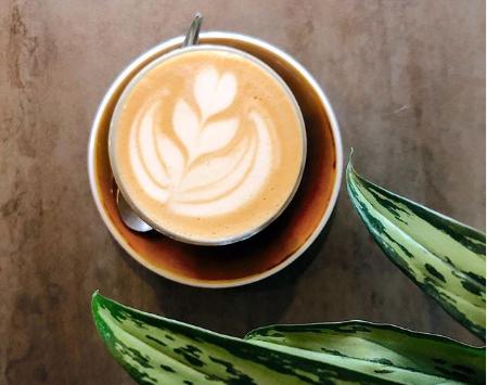Plantbased koffie in Gent
